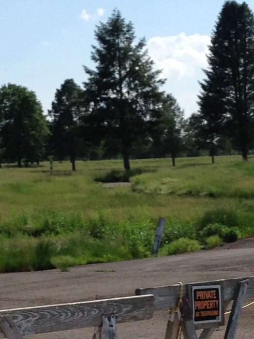 Abandoned Golf Course
