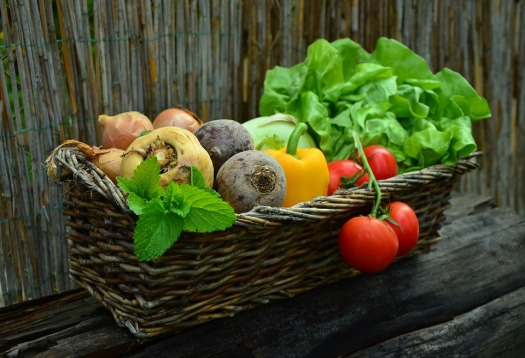 Garden-vegetables-basket-organic-farm